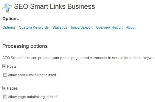 SEO Smart Links Processing Options
