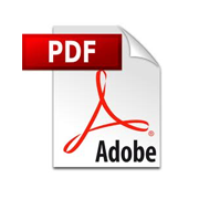 How to Add a PDF Download for Posts in WordPress