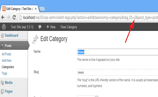 finding category, terms, and tags ID in WordPress