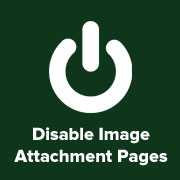 Disable Attachment Pages
