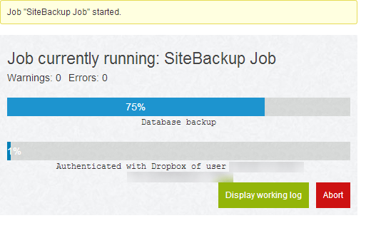 Running a manual backup job in BackWPup