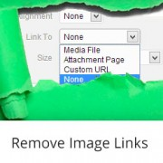 Remove Image Links