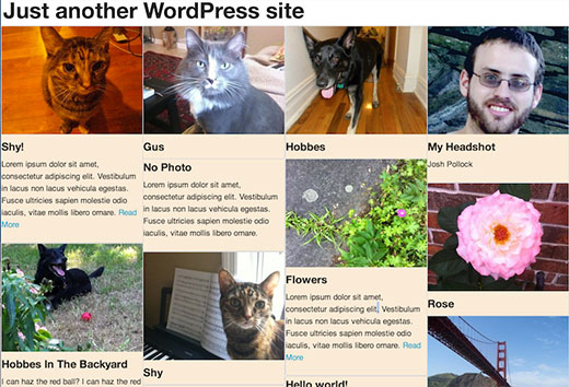 Screenshot of Masonry Grid Layout in WordPress