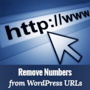 How to Get Rid of Numbers from WordPress URL