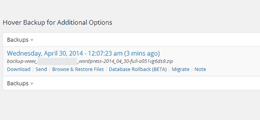 Download your backup zip file
