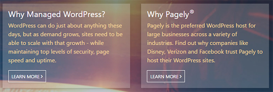 Pagely provides quality WordPress hosting