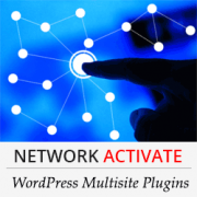 Should You Network Activate All Plugins on WordPress Multisite