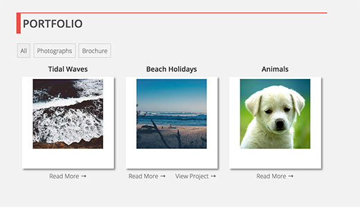 Portfolio section on a WordPress site