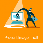 4 Ways to Prevent Image Theft in WordPress