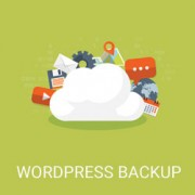 Which WordPress Files Should You Backup? And the Right Way to do it