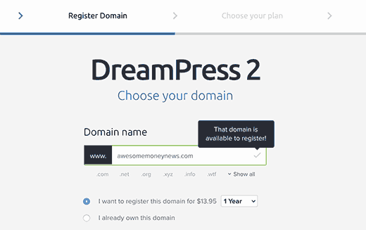Step 2 - Choose domain name