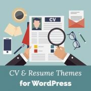 26 Best WordPress Resume Themes for Your Online CV (2017)