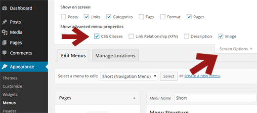 Enable CSS classes option for Navigation Menus