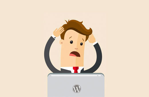 Common WordPress errors