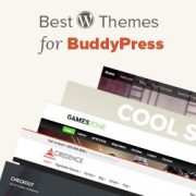 20 Best BuddyPress Themes for Your WordPress Website
