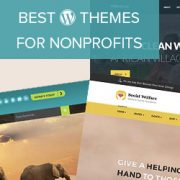 21 Best WordPress Themes for Nonprofit Organizations