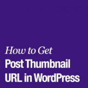 How to Get the Post Thumbnail URL in WordPress