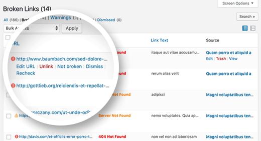 Fixing broken links in WordPress
