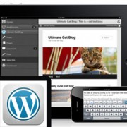 How to Use WordPress App on your iPhone and iPad
