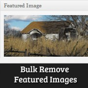 How To Bulk Remove Featured Images From Posts in WordPress