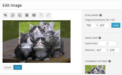 Rotate, crop, scale your image in the image editor