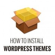 Beginners Guide: How to Install a WordPress Theme