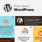 25 Interesting Facts About WordPress (Infographic)