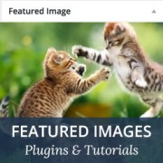 14 Best Featured Image Plugins and Tutorials for WordPress