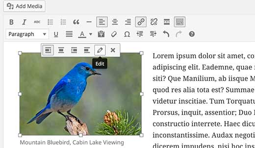 Editing an image in WordPress