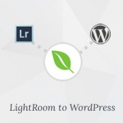 How to Upload Photos from Adobe Lightroom to WordPress