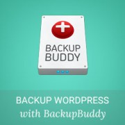 How to Keep Your WordPress Content Safe with BackupBuddy