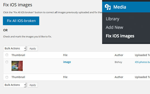 How to Fix Upside Down or Flipped Images in WordPress