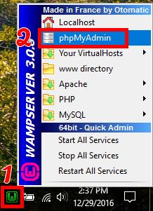 Launching PHPMyAdmin