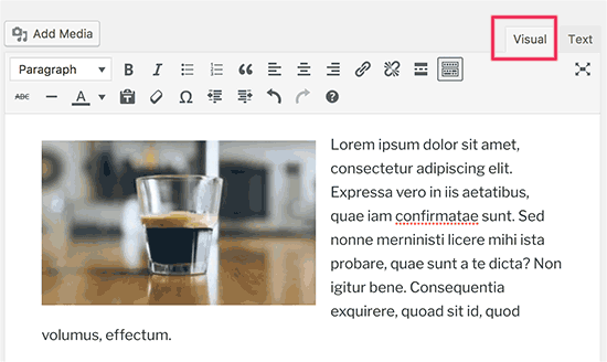 Visual editor in WordPress