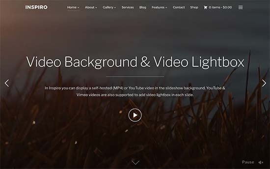 wordpress theme with video slider free