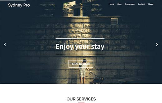 25 Best One Page WordPress Themes (2017)