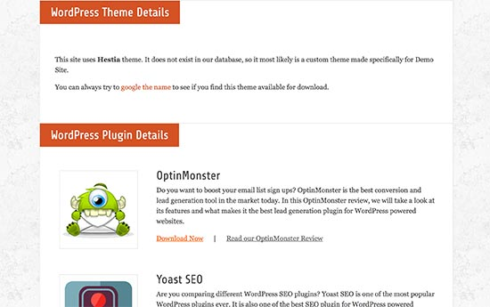 WordPress theme and plugin details