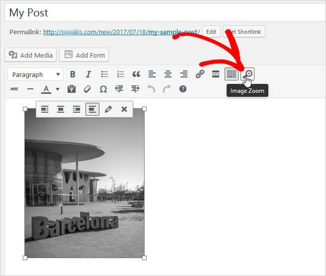 Zoom toevoegen aan berichten / pagina's afbeeldingen