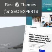 24 Best WordPress Themes for SEO Experts