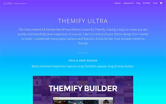 24 Best WordPress Themes for SEO Experts (2018)