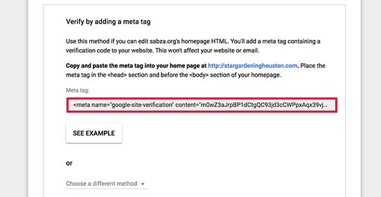 Copy meta tag to verify your ownership of domain name