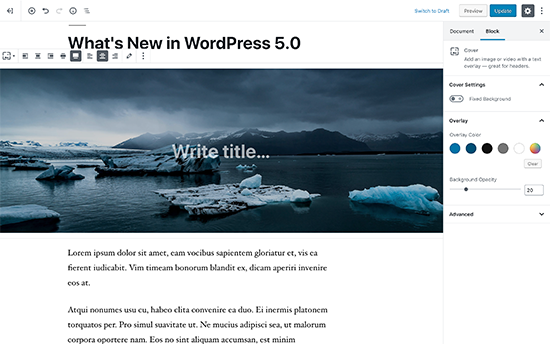 New WordPress editor called Gutenberg block editor