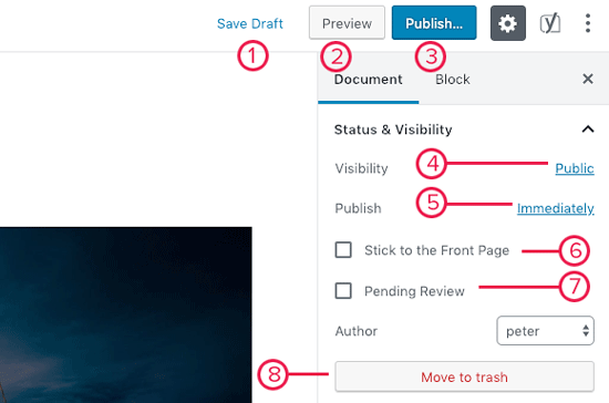 Publish options