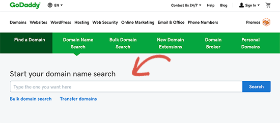 Search domain name on GoDaddy