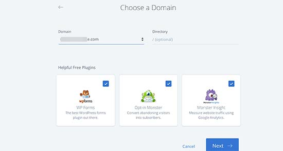Select domain name and essential plugins