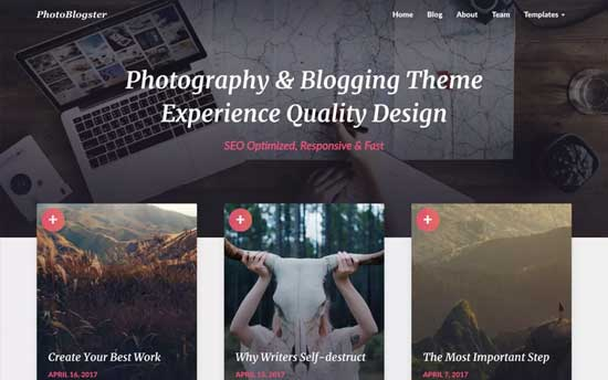 61 Best Free Wordpress Blog Themes For 2019 Expert Pick