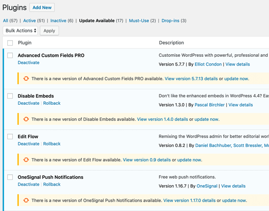 WordPress Plugin Update One at a Time