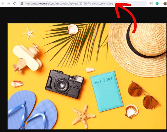 WordPress'teki Görsellerin URL'sini Alın