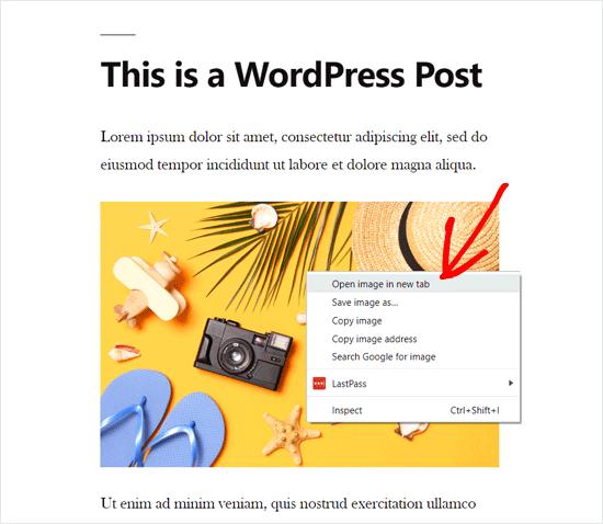 WordPress Resmini Yeni Bir Sekmede Açın