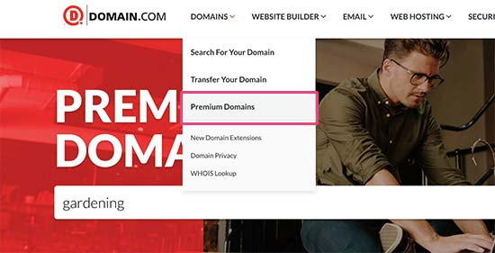 Premium domain search